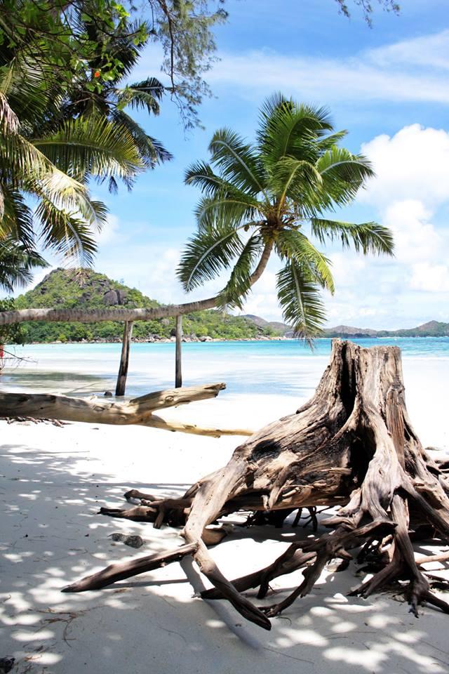 Seychelly – ráj nazemi?